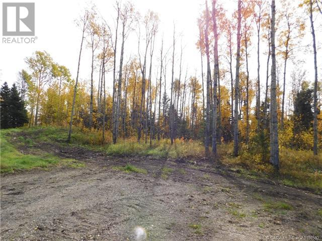 122 Blueberry Meadows Lane, Rural Clearwater County, Alberta  T0M 1H0 - Photo 3 - CA0180592