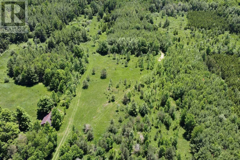 466408 12th Concession B, Grey Highlands, Ontario  N0C 1E0 - Photo 6 - X5146840