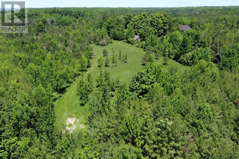 466408 12th Concession B, Grey Highlands, Ontario  N0C 1E0 - Photo 7 - X5146840