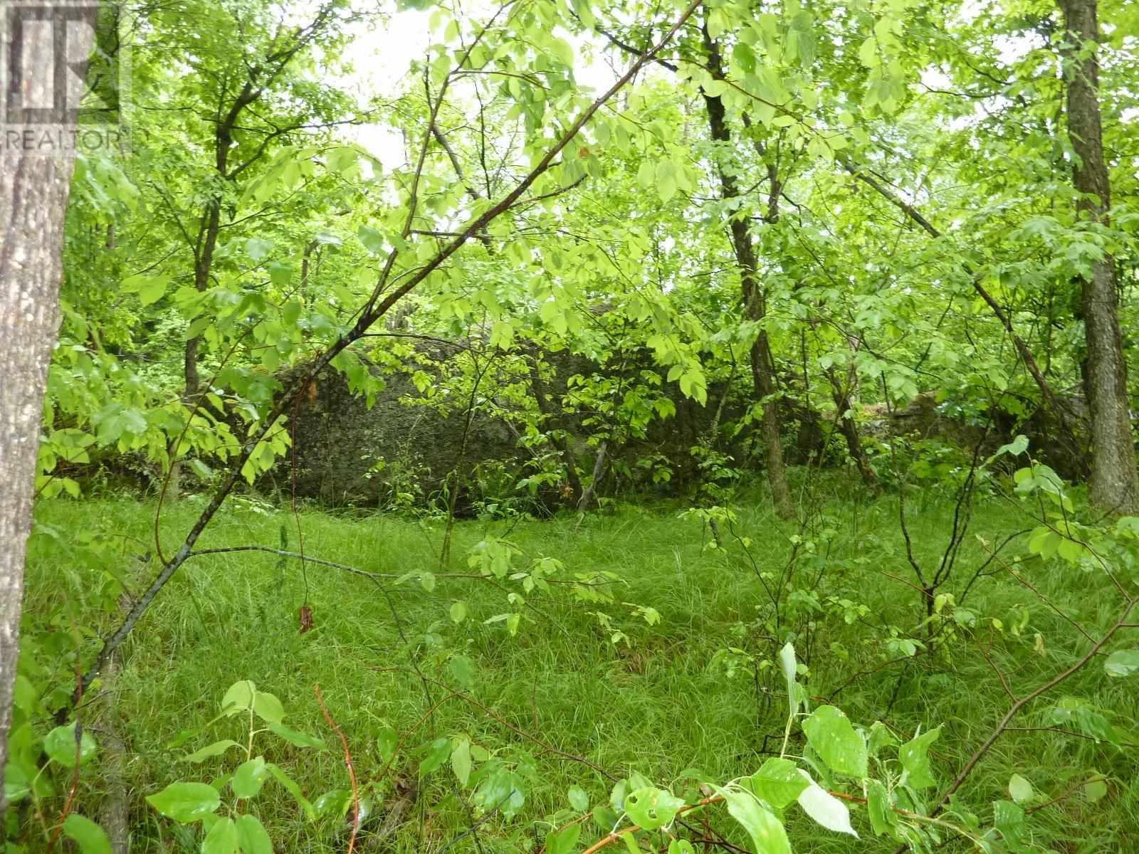 205 Cotman Ln, South Frontenac, Ontario  K0H 2H0 - Photo 15 - K21003864
