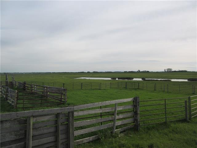 250 Range Rd, Rural Wheatland County, Alberta  T1P 1J6 - Photo 9 - C4302878