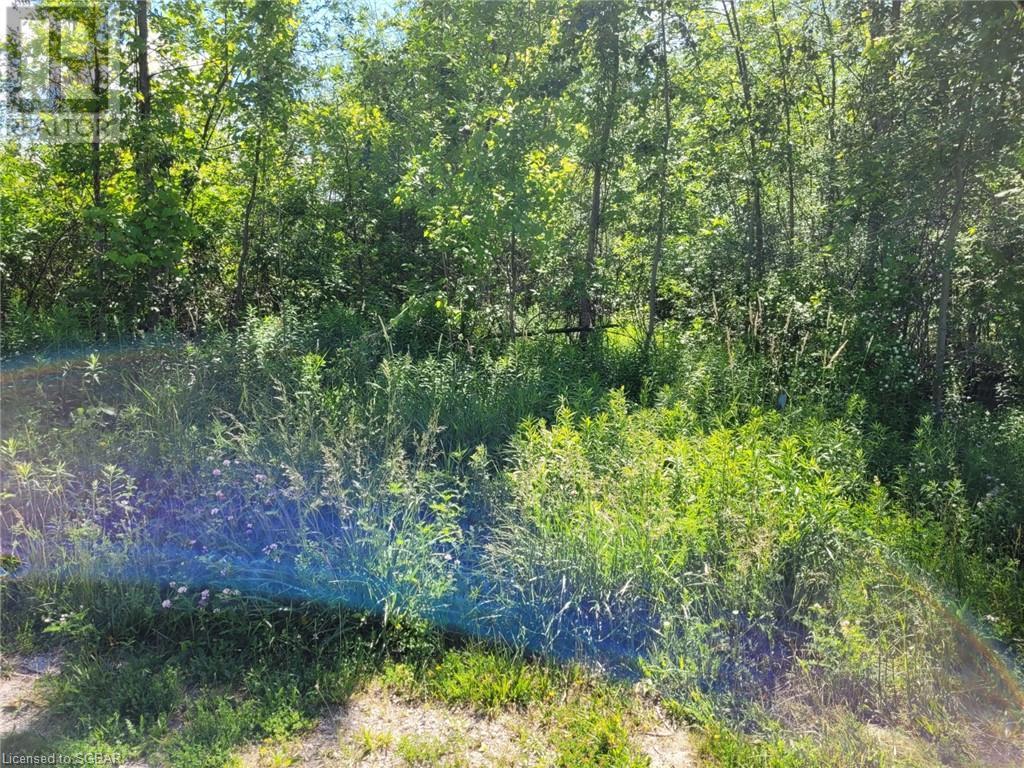 11325 26 Highway, Collingwood, Ontario  L8Y 5H8 - Photo 1 - 40132598