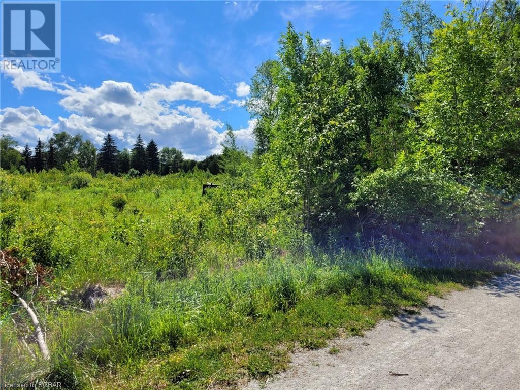 11325 26 Highway, Collingwood, Ontario  L8Y 5H8 - Photo 3 - 40132598
