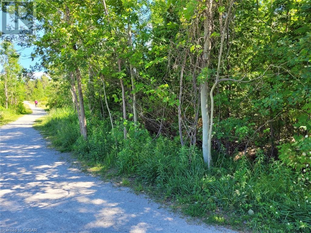 11325 26 Highway, Collingwood, Ontario  L8Y 5H8 - Photo 5 - 40132598
