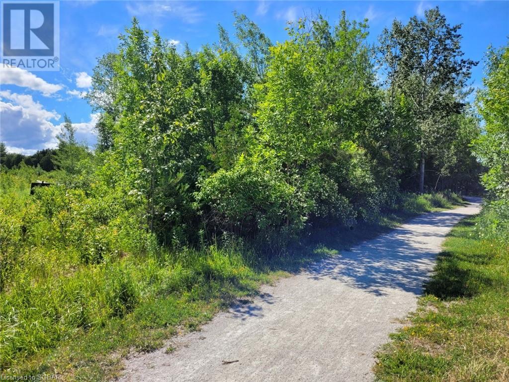11325 26 Highway, Collingwood, Ontario  L8Y 5H8 - Photo 6 - 40132598