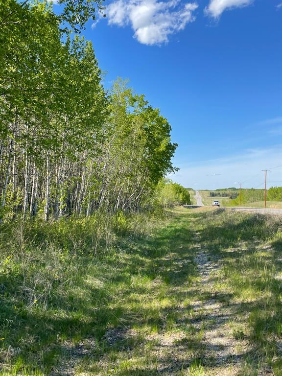 W: 5 R:3 T:26 S:3 Se Whitetail Road, Rural Rocky View County, Alberta  T4C 2H2 - Photo 10 - A1118312