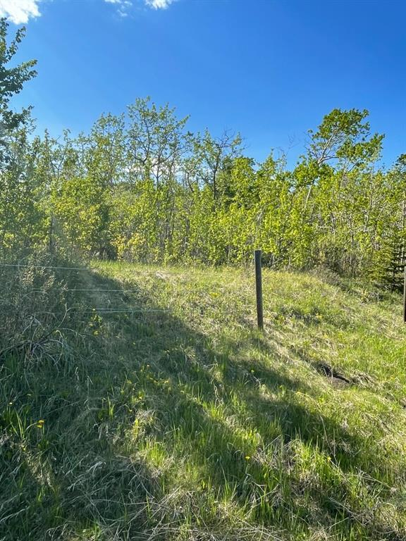 W: 5 R:3 T:26 S:3 Se Whitetail Road, Rural Rocky View County, Alberta  T4C 2H2 - Photo 11 - A1118312