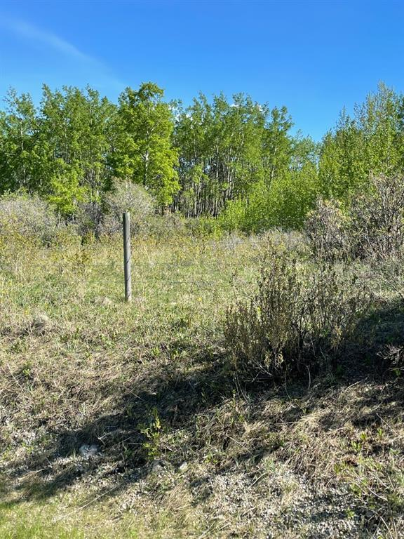 W: 5 R:3 T:26 S:3 Se Whitetail Road, Rural Rocky View County, Alberta  T4C 2H2 - Photo 3 - A1118312