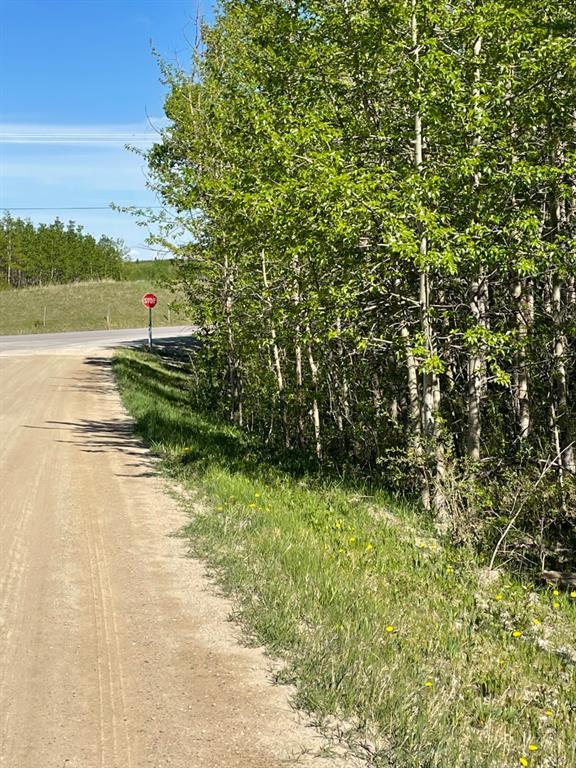 W: 5 R:3 T:26 S:3 Se Whitetail Road, Rural Rocky View County, Alberta  T4C 2H2 - Photo 6 - A1118312
