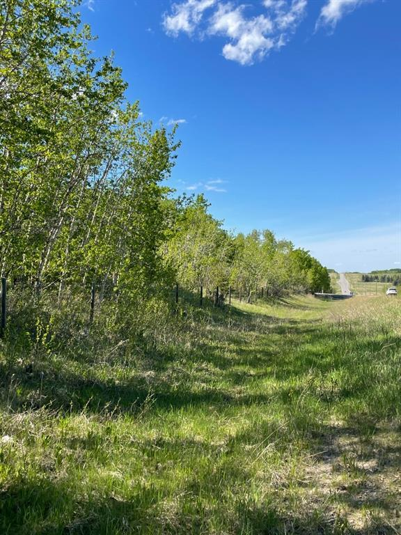 W: 5 R:3 T:26 S:3 Se Whitetail Road, Rural Rocky View County, Alberta  T4C 2H2 - Photo 9 - A1118312
