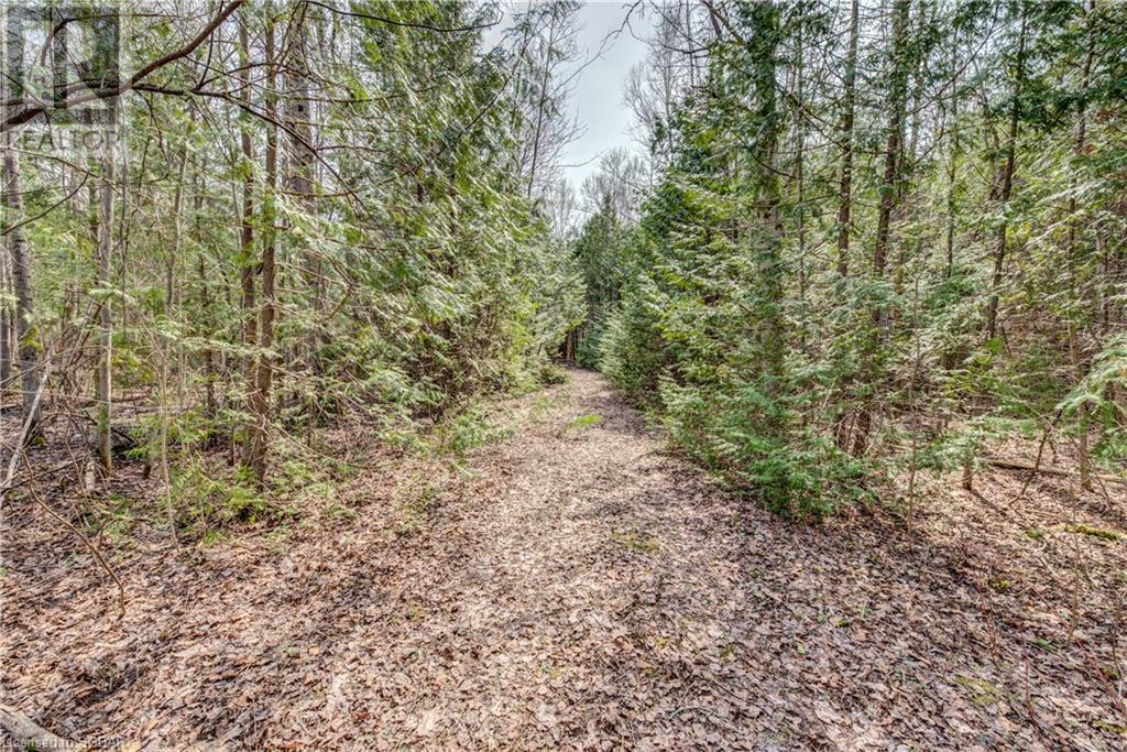 1649 12/13 Sunnidale Sideroad N, Clearview, Ontario  L0M 1S0 - Photo 49 - 40105907