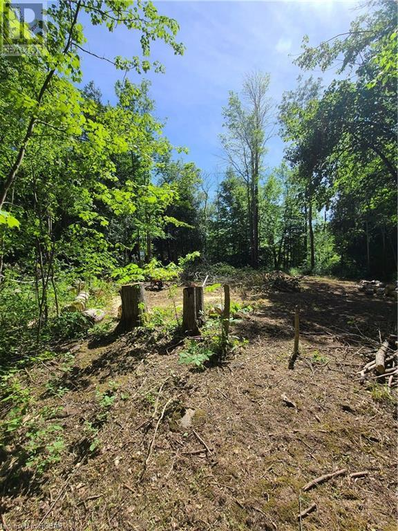 Lt 19 26 Highway, Meaford (Municipality), Ontario  N4K 1L6 - Photo 13 - 40133404