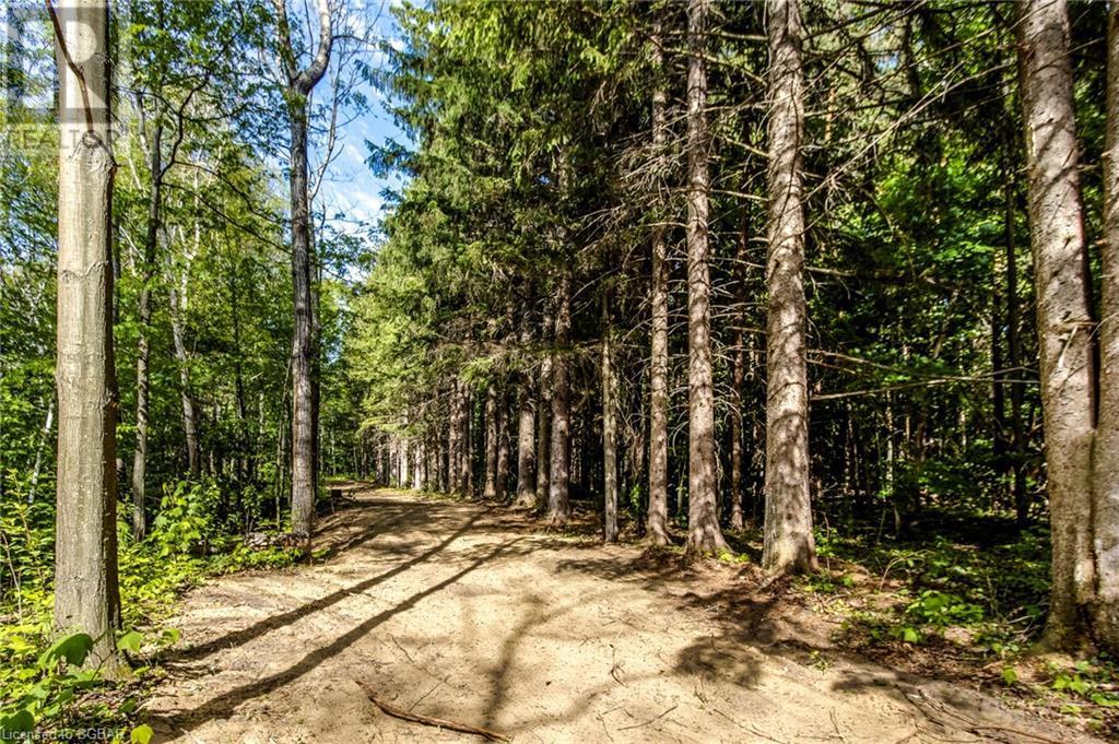 1830 Methodist Point Road, Tiny, Ontario  L9M 0M4 - Photo 17 - 40133698