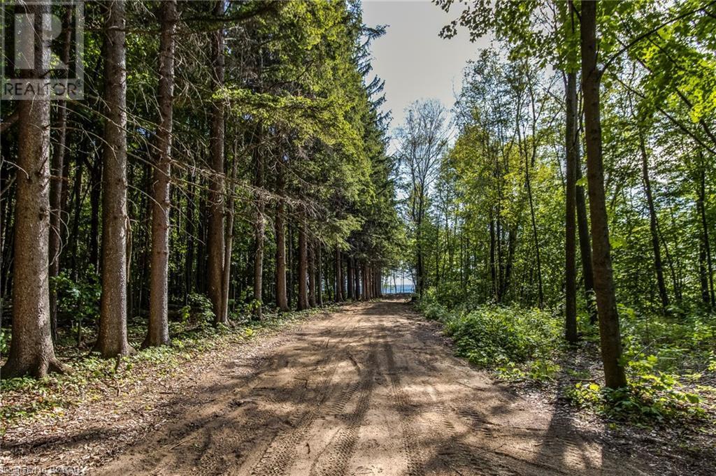1830 Methodist Point Road, Tiny, Ontario  L9M 0M4 - Photo 18 - 40133698