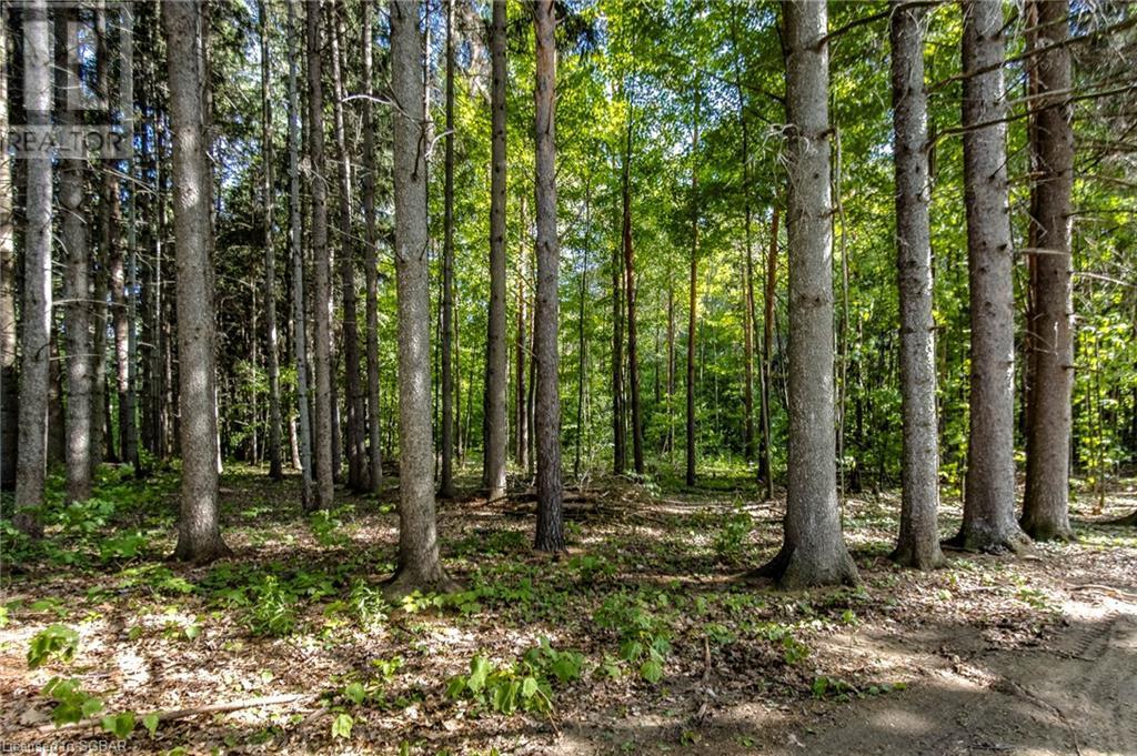1830 Methodist Point Road, Tiny, Ontario  L9M 0M4 - Photo 19 - 40133698