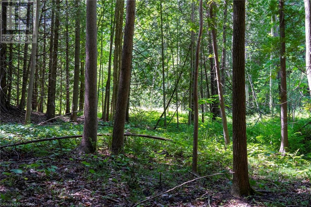 265839 25 Sideroad, Meaford (Municipality), Ontario  N4L 1W5 - Photo 48 - 40132621