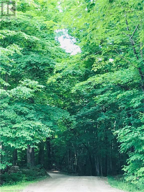 2433 Pickerel And Jack Lake Road, Burk's Falls, Ontario  P0A 1C0 - Photo 13 - 40133978