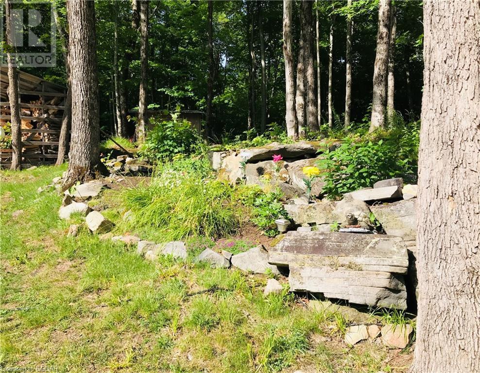 2433 Pickerel And Jack Lake Road, Burk's Falls, Ontario  P0A 1C0 - Photo 29 - 40133978