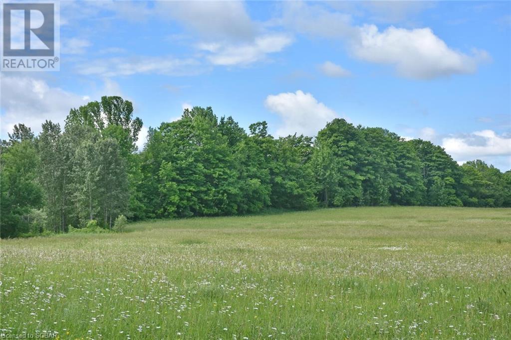 315298 3rd A Line, Grey Highlands, Ontario  N0C 1E0 - Photo 10 - 40135067