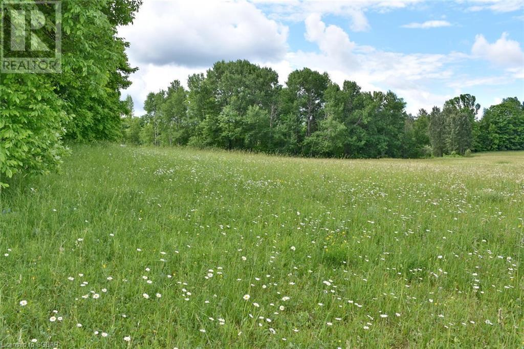 315298 3rd A Line, Grey Highlands, Ontario  N0C 1E0 - Photo 11 - 40135067