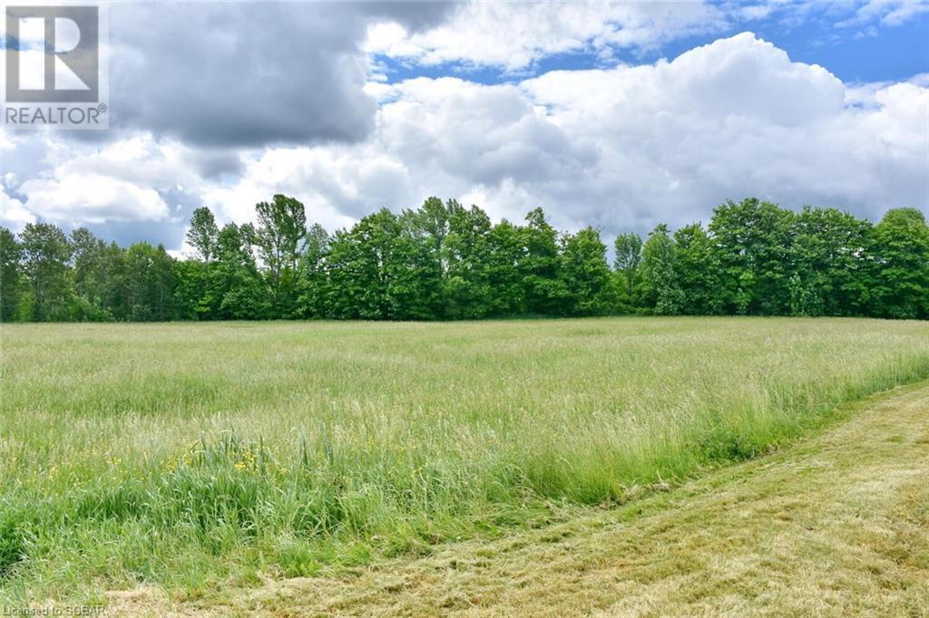 315298 3rd A Line, Grey Highlands, Ontario  N0C 1E0 - Photo 4 - 40135067