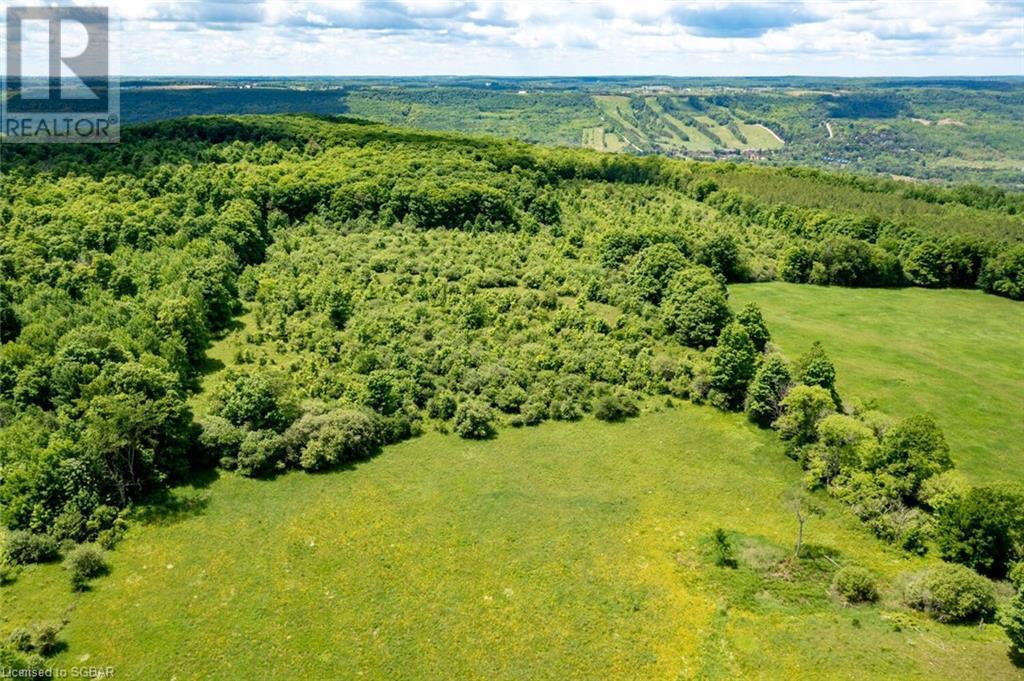 315298 3rd A Line, Grey Highlands, Ontario  N0C 1E0 - Photo 5 - 40135067