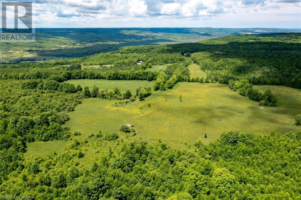 315298 3rd A Line, Grey Highlands, Ontario  N0C 1E0 - Photo 9 - 40135067