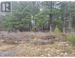 LOT 16A HIGHWAY 38