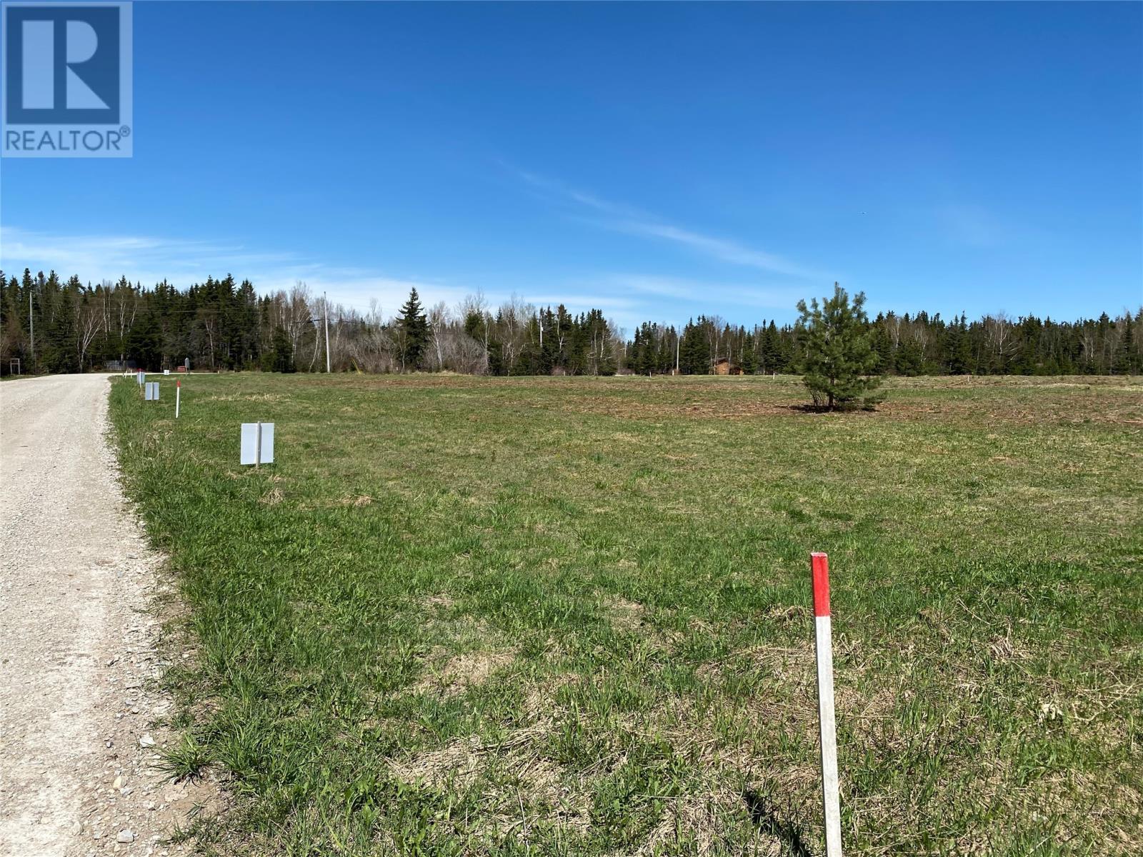 Lot#4 Upper Tanquil Waters Road, Reidville, Newfoundland & Labrador  A8A 1Z4 - Photo 4 - 1232851