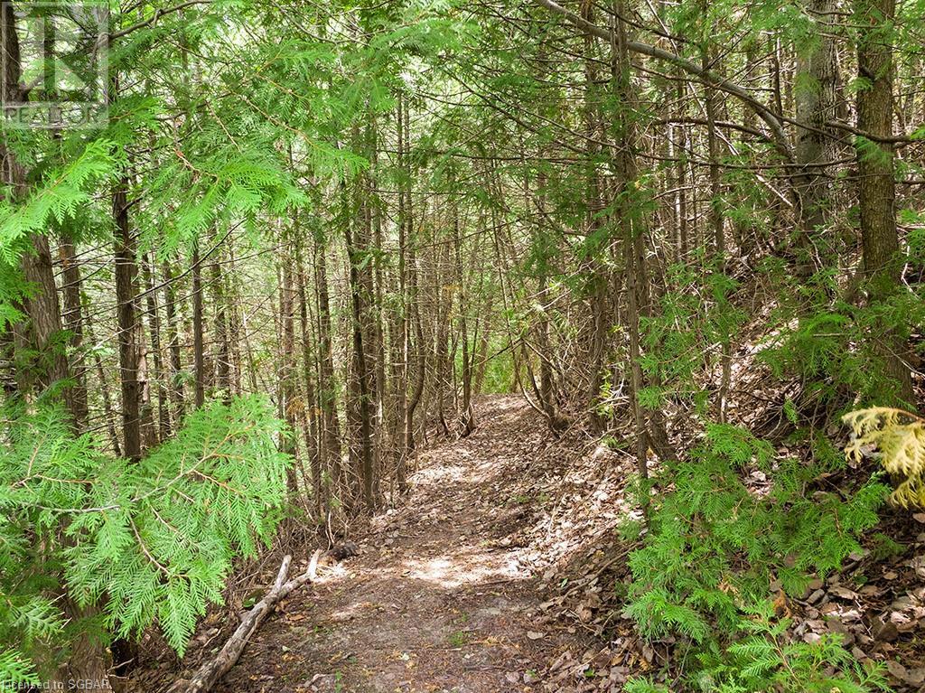 827416 40 Grey Road, Town Of Blue Mountains, Ontario  N0H 1J0 - Photo 26 - 40134792