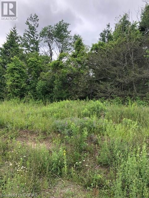92 17 Concession E, Tiny, Ontario  L9M 0P3 - Photo 1 - 40136557