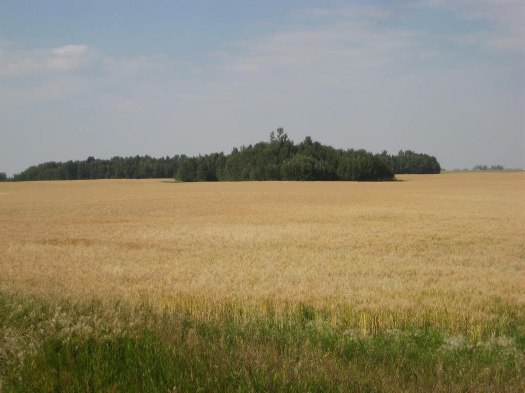 Se 20 30 1 W5 Highway 2a, Carstairs, Alberta  T0M 0N0 - Photo 2 - A1067588