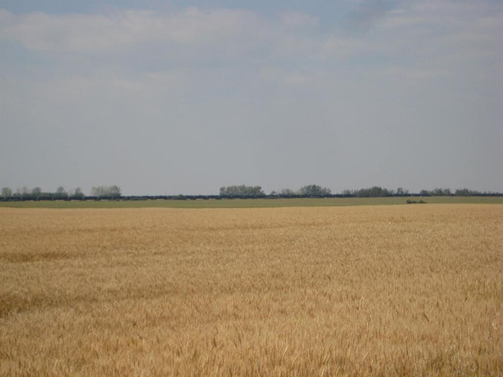 Se 20 30 1 W5 Highway 2a, Carstairs, Alberta  T0M 0N0 - Photo 11 - A1067588