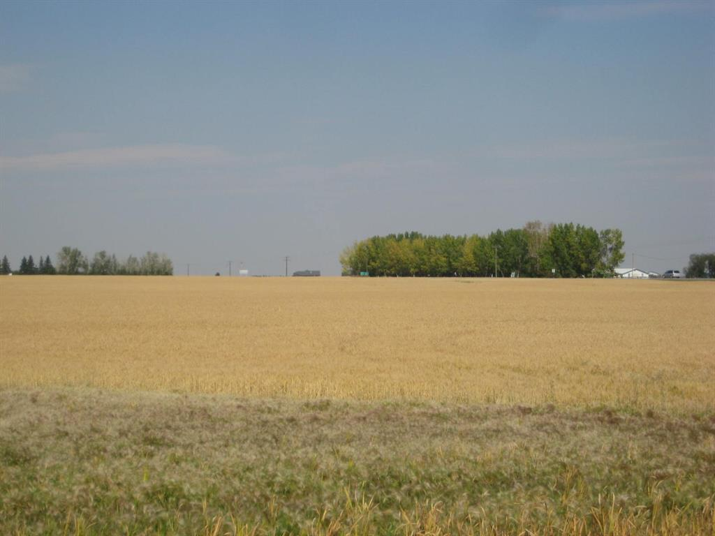 Se 20 30 1 W5 Highway 2a, Carstairs, Alberta  T0M 0N0 - Photo 4 - A1067588