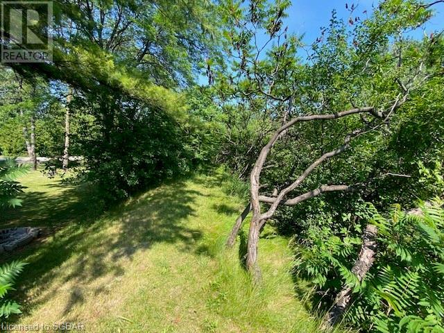32 Oliver Crescent, Collingwood, Ontario  L9Y 3Z1 - Photo 16 - 40138038