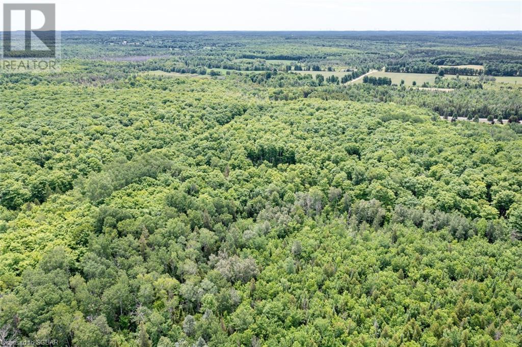 555590 6th Line, The Blue Mountains, Ontario  N0H 2E0 - Photo 28 - 40135997