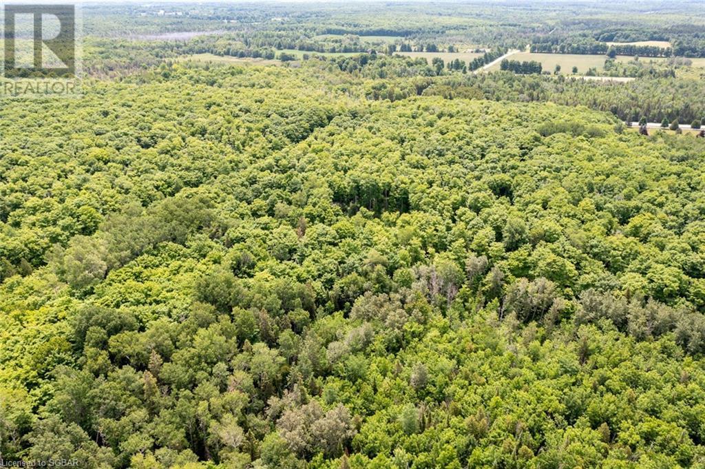 555590 6th Line, The Blue Mountains, Ontario  N0H 2E0 - Photo 27 - 40135997