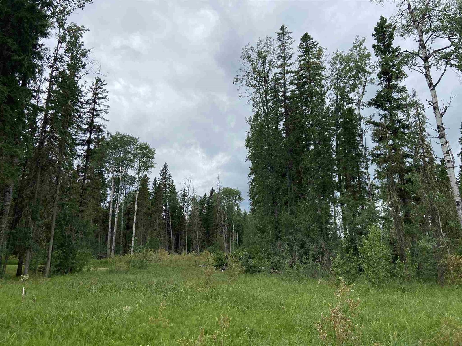 #109 49505 Rr 80, Rural Brazeau County, Alberta  T7A 2A3 - Photo 2 - E4253004