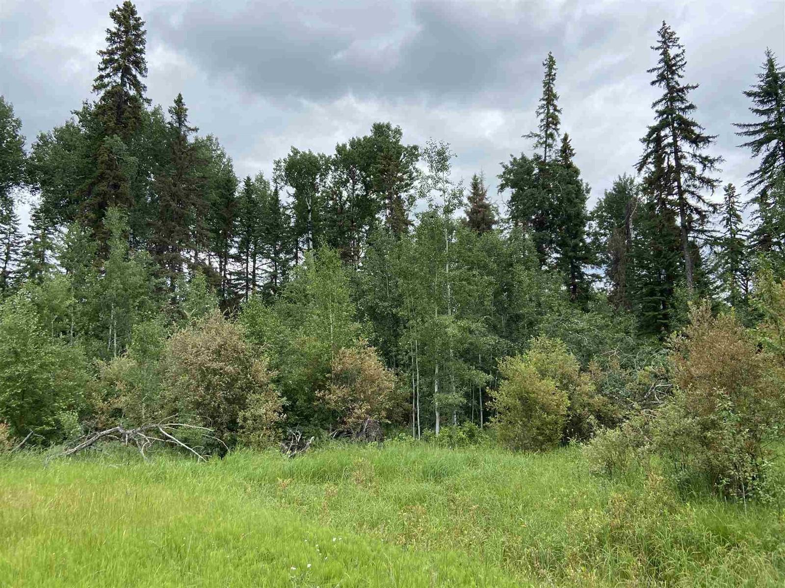 #109 49505 Rr 80, Rural Brazeau County, Alberta  T7A 2A3 - Photo 3 - E4253004