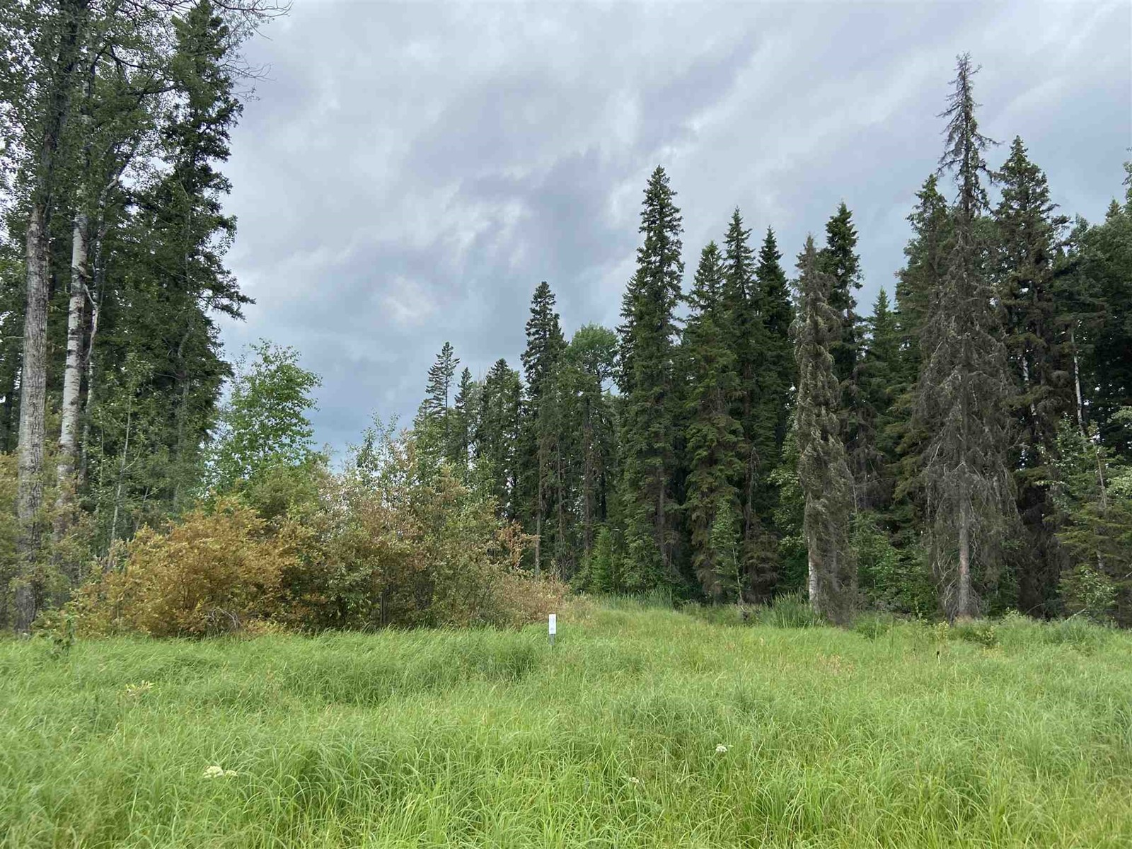 #109 49505 Rr 80, Rural Brazeau County, Alberta  T7A 2A3 - Photo 4 - E4253004