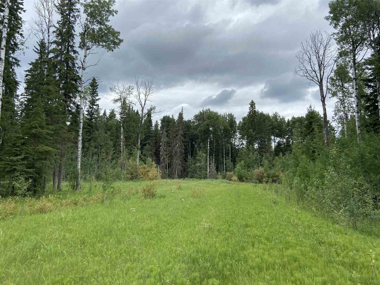 #109 49505 Rr 80, Rural Brazeau County, Alberta  T7A 2A3 - Photo 5 - E4253004