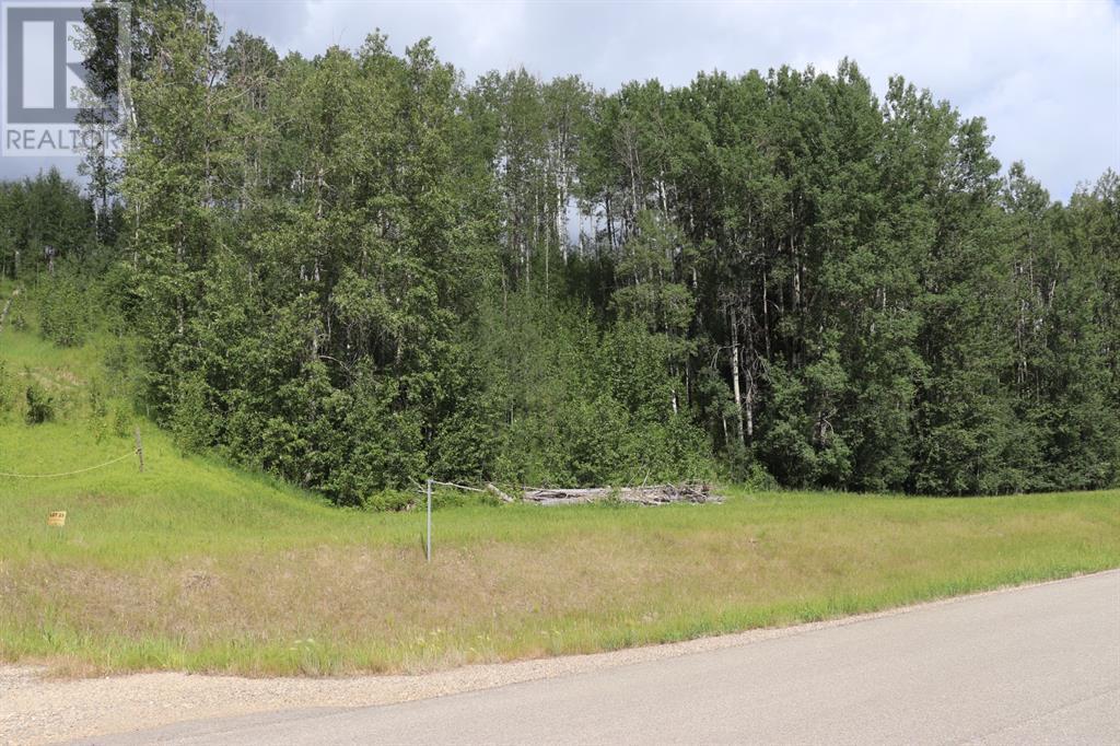 23 River Ridge Estates, Rural Yellowhead County, Alberta  T7E 3A6 - Photo 3 - A1128554