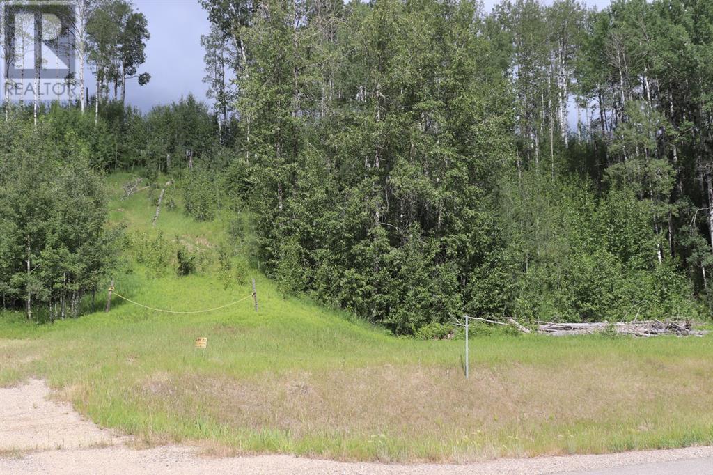 23 River Ridge Estates, Rural Yellowhead County, Alberta  T7E 3A6 - Photo 2 - A1128554