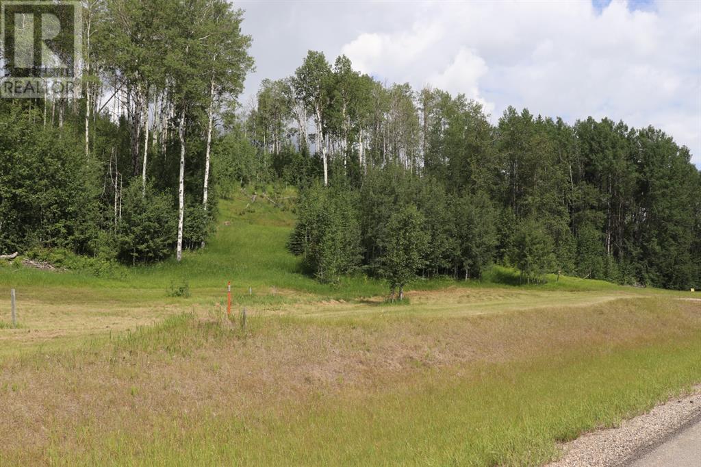 23 River Ridge Estates, Rural Yellowhead County, Alberta  T7E 3A6 - Photo 5 - A1128554