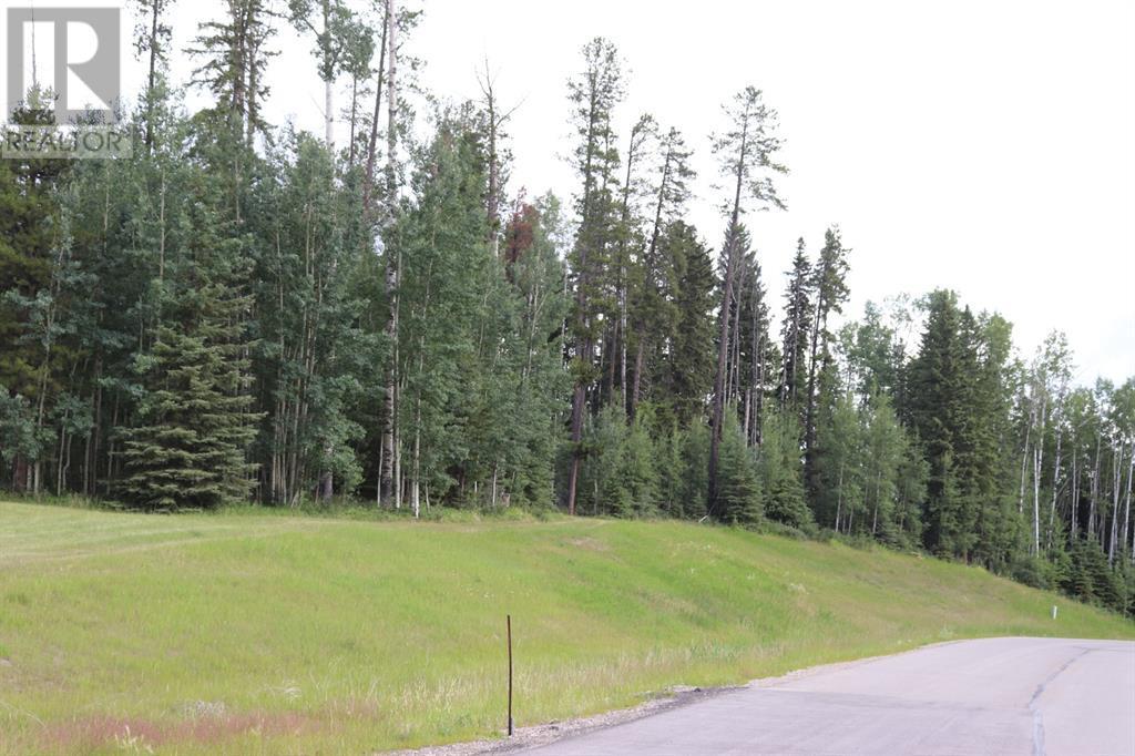 48 River Ridge Estates, Rural Yellowhead County, Alberta  T7E 3A6 - Photo 4 - A1128566