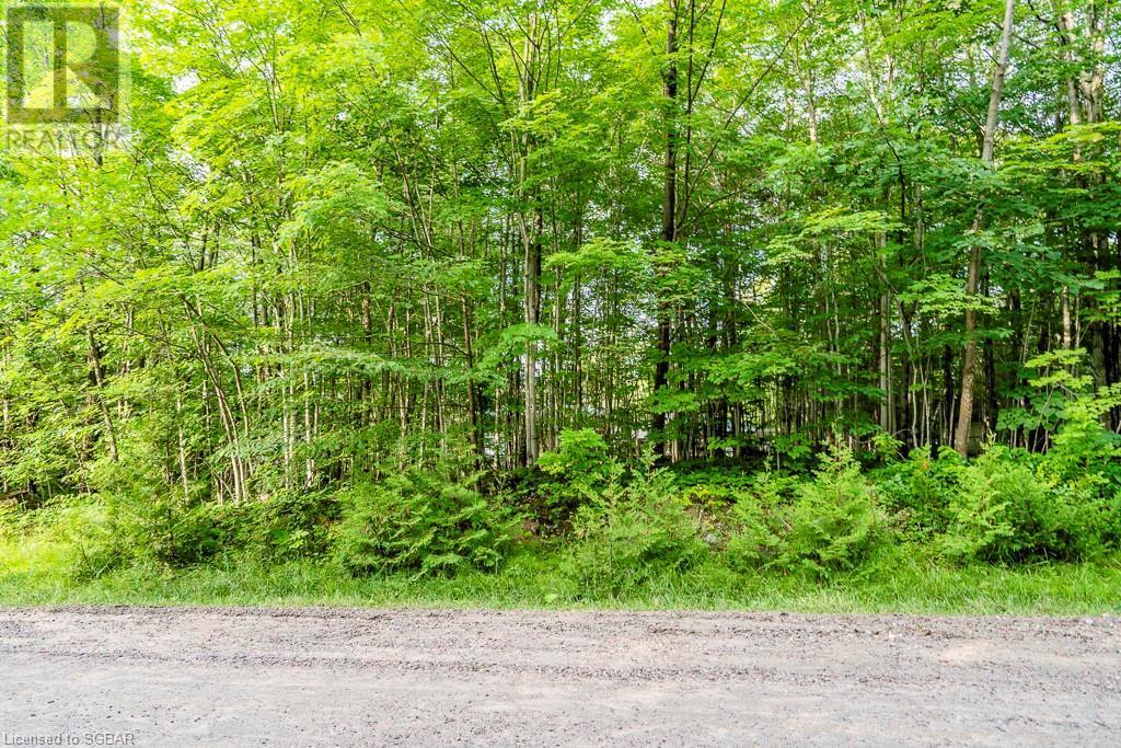 Lt 504 Seneca Crescent, Tiny, Ontario  L9M 0C9 - Photo 17 - 40139991