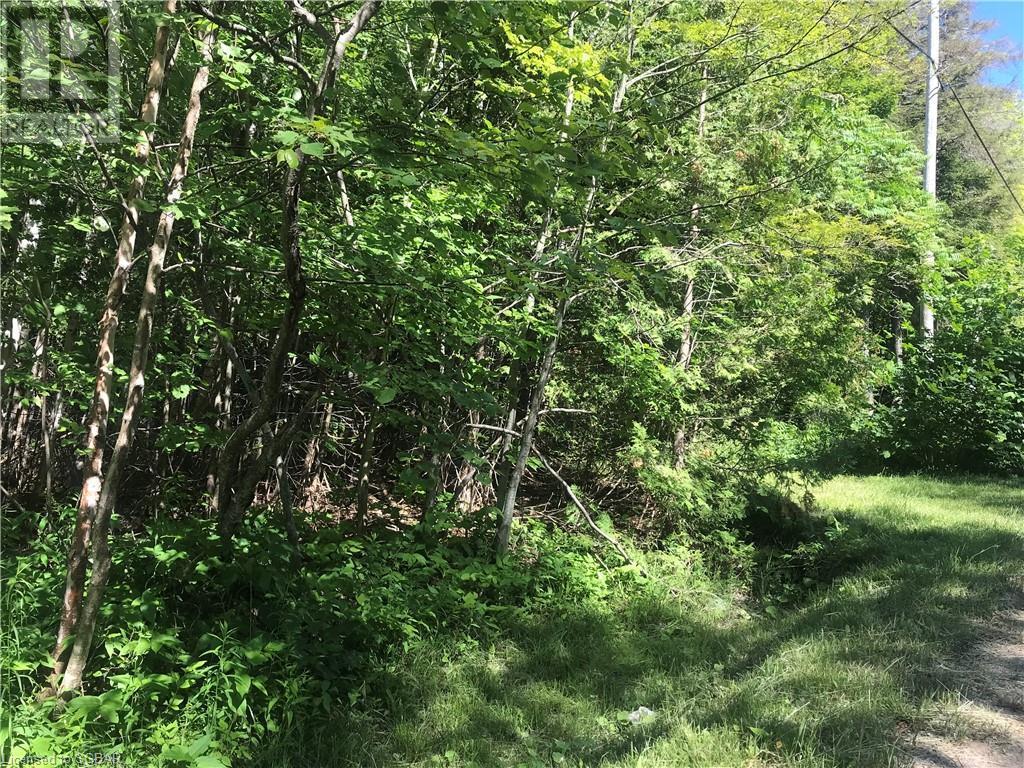 Lt 504 Seneca Crescent, Tiny, Ontario  L9M 0C9 - Photo 4 - 40139991