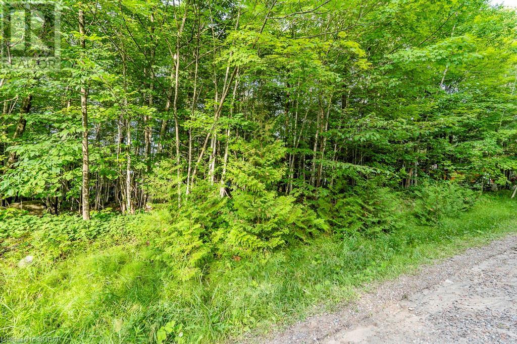 Lt 504 Seneca Crescent, Tiny, Ontario  L9M 0C9 - Photo 16 - 40139991