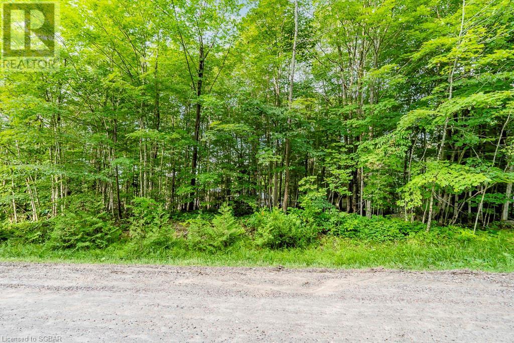 Lt 504 Seneca Crescent, Tiny, Ontario  L9M 0C9 - Photo 15 - 40139991