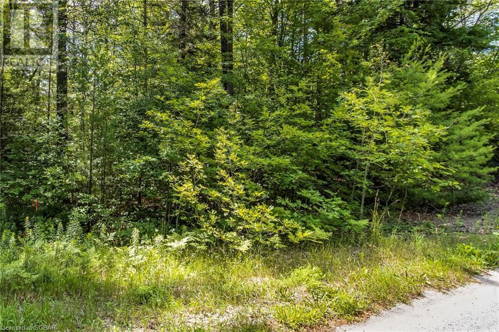 Lt 401 Desroches Trail, Tiny, Ontario  L9M 0H9 - Photo 1 - 40141690